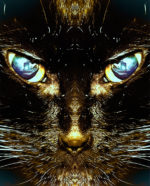 image: fierce cat-like face of Felinus, Rex Spiritus Custodes staring straight out at the viewer